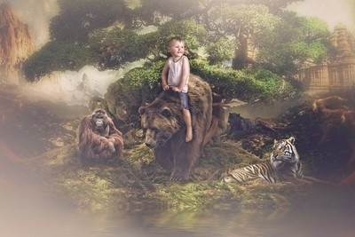 the jungle ride