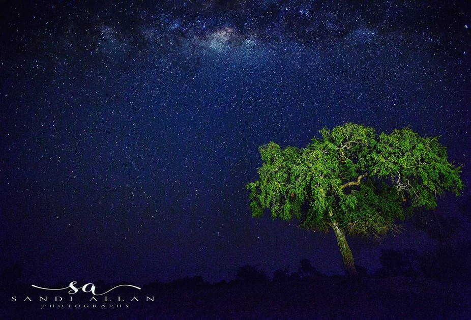 On a trip to Zambia we were fortunate enough to photograph the Milky Way .