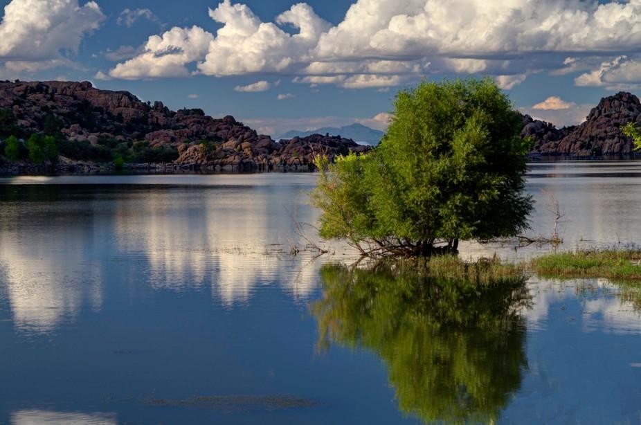 """On the """"Peavine Trail"""" Prescott, AZ"""