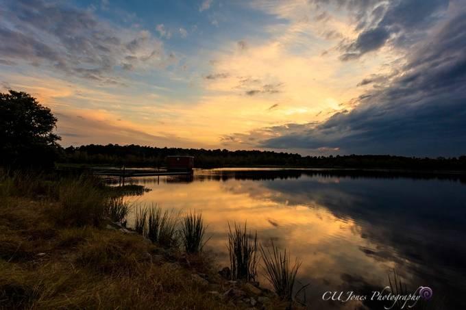 Bushy Park boat landing at sunset in Goose Creek, South Carolina.