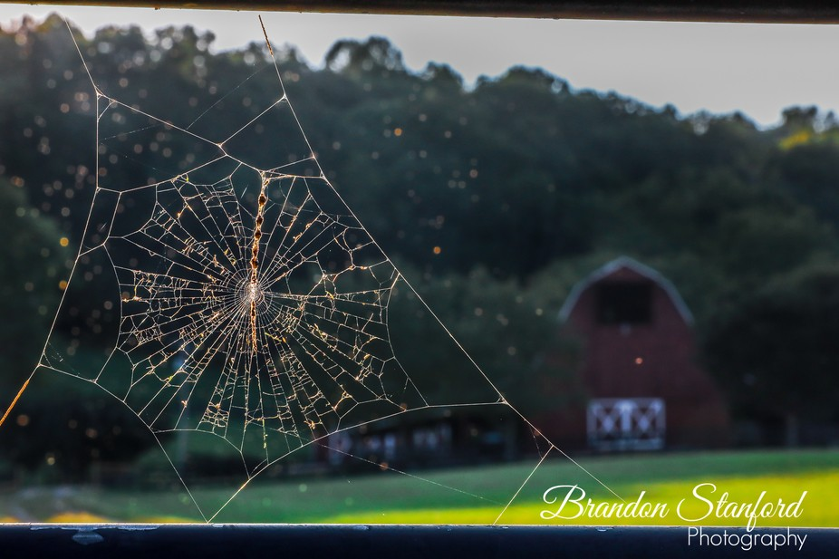 I saw this farm while driving down the road. This was right at sunset with a beautiful barn in th...