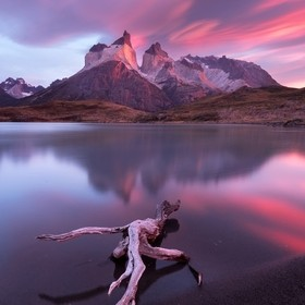 Torres del paine - March 2016  I enjoyed this morning more than any other sunrise in my life. After walking almost 4 km and meeting with a puma l...