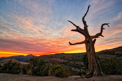 Mount Lemmon Sunset