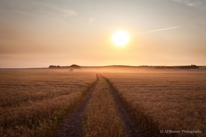 Golden Harvest II by AFBennerPhotography - Creative Landscapes Photo Contest vol3