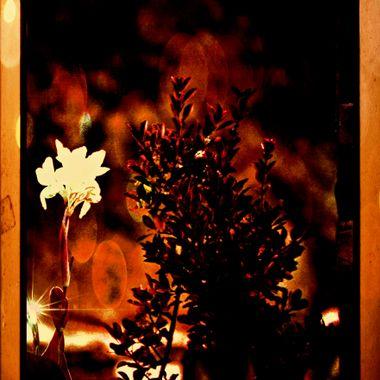 Manipulated image of flower stem.