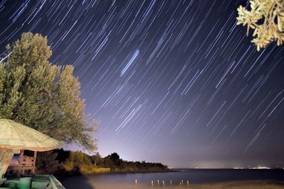 Star trail by the olive tree and the sea