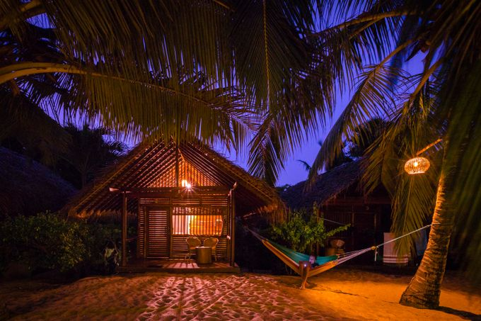 Tiny Beach Cabana by evgenyvasenev - Palm Trees Photo Contest