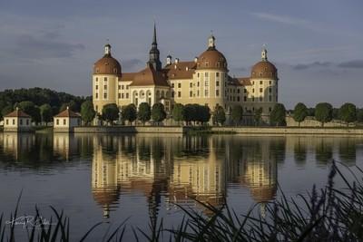 Moritzburg Castle 6