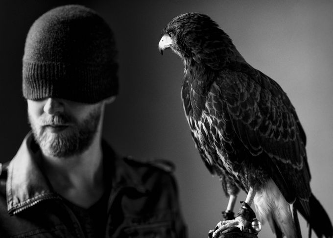 Hawkman by Disselfoto - Hats Photo Contest
