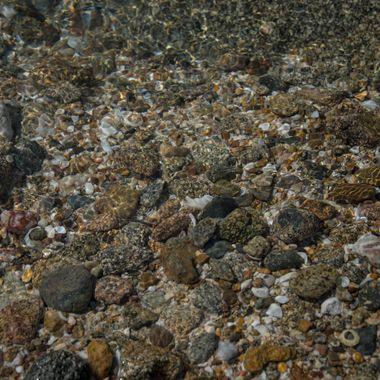 Clear Water Ocean