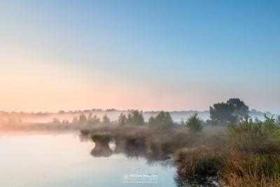 Misty Sunrise Pikmeeuwenwater
