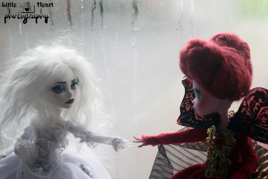 Sisters of Wonderland