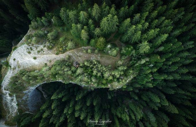 Forest by rumenzografov - High Vantage Points Photo Contest
