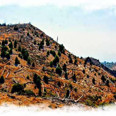 Damage to the mountains of Samos from the year 2000 fire.