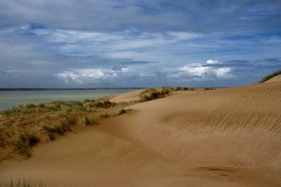 Stormy Day. Canunda National Park South Australia