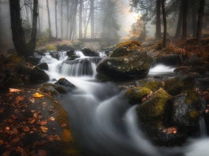Bistrishka river - Vitosha mountain by nikolaialexiev - Streams In Nature Photo Contest