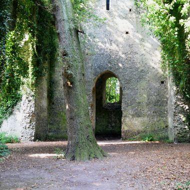St Mary Church Ruins, East Somerton, Norfolk, UK