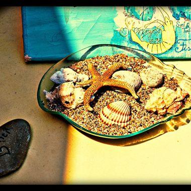 Lovely arrangement of sea objects.