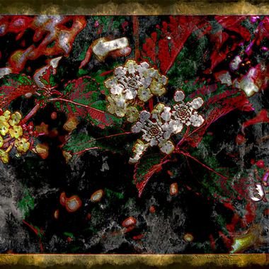 Abstract manipulation of a plant photo.