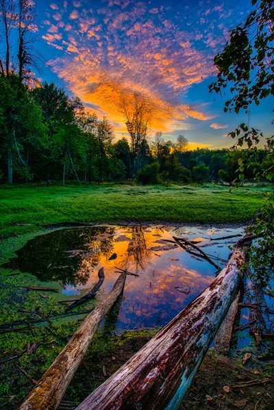 Shrinking Pond Sunrise