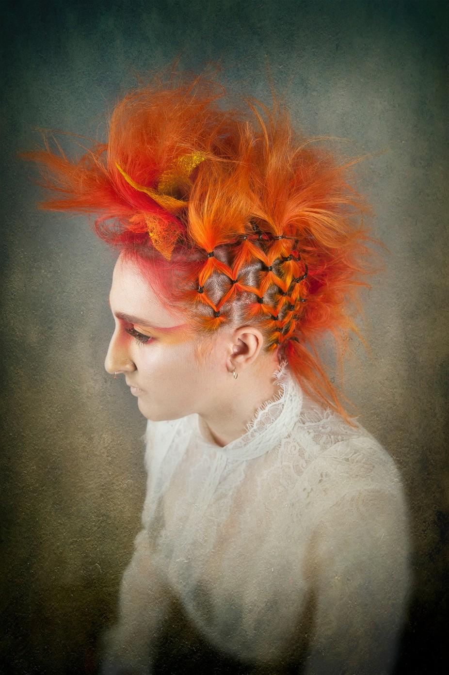 Orange by ShiftingLightPhotography - Orange Tones Photo Contest