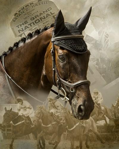 Racehorse History 1 web