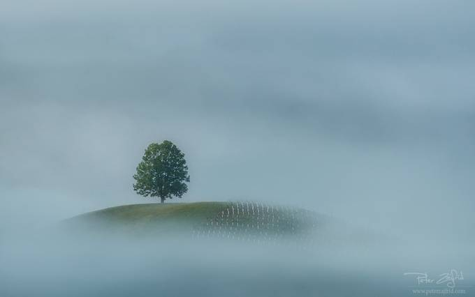 Misty window by saintek - Image Of The Month Photo Contest Vol 26