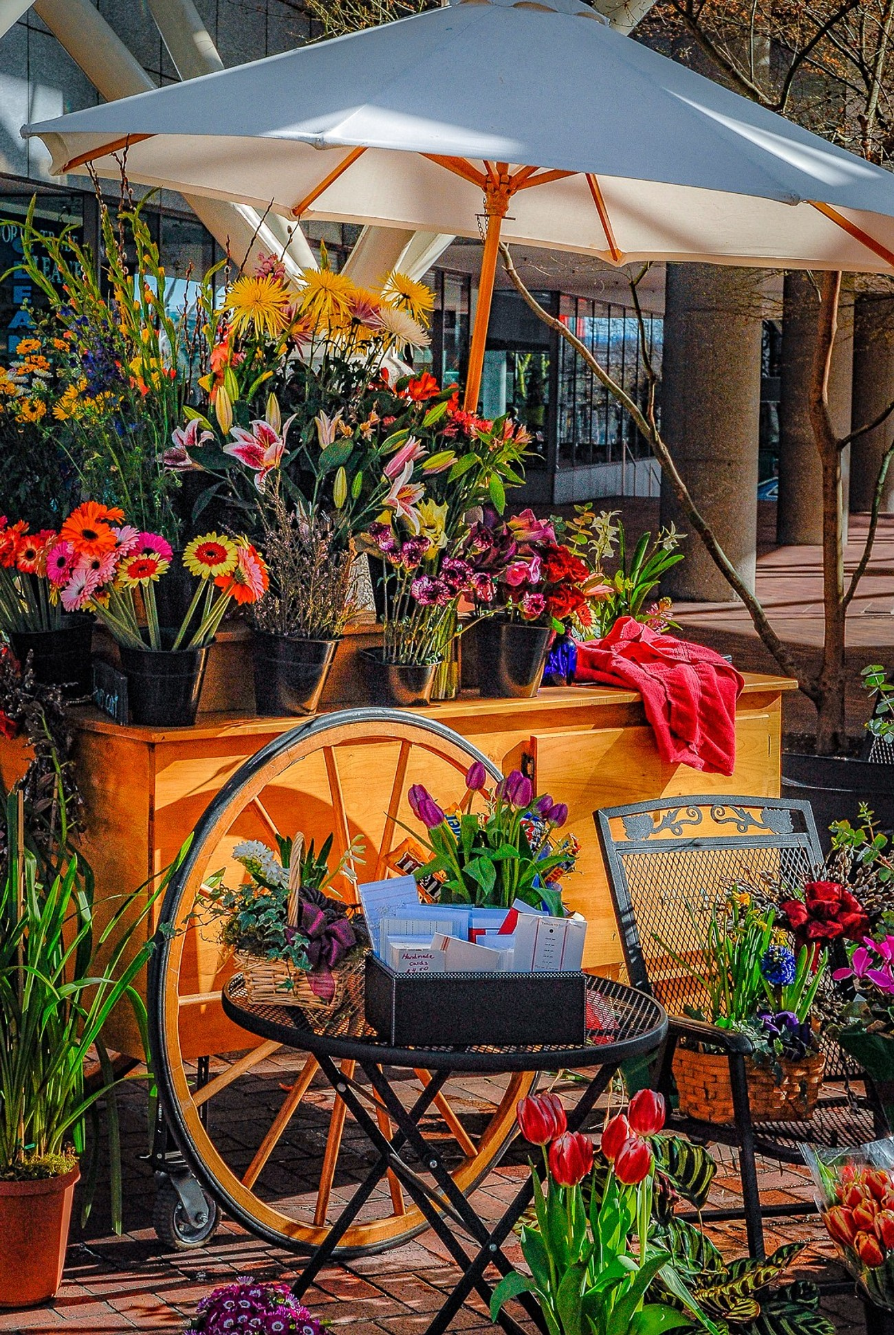 It is not unusual to encounter vendor carts in downtown Portland, Oregon. This flower cart was being illuminated by early morning sun that was penetrating between two buildings. It was almost like a spotlight. Obviously, I was attracted by the quality of the light and the beautiful colors of the many flowers on display for sale.