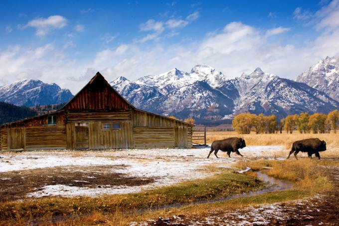 Abandoned Barn in Gros Ventre, Jackson, WY by Jdmccranie - Monthly Pro Vol 35 Photo Contest