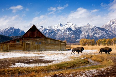 Abandoned Barn in Gros Ventre, Jackson, WY