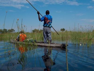 Makoro in the Okavanga Delta