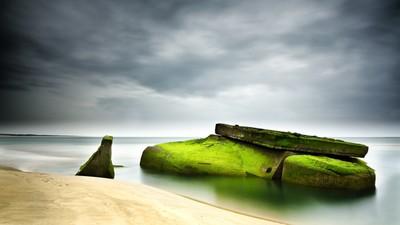 Blockalgae