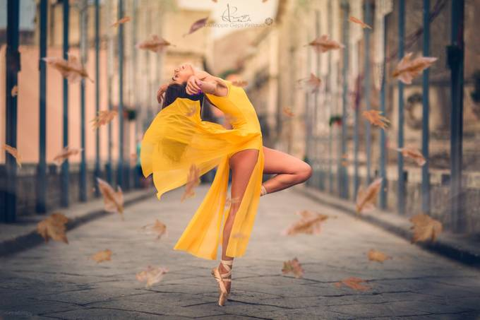 Ballet Photo Contest Winner