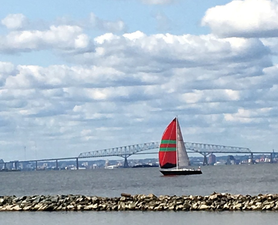 Beautiful day at the Park as a sailboat was sailing by.