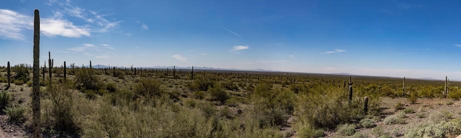 Sonoran Desert between Tucson and Phoenix in Arizona panorama