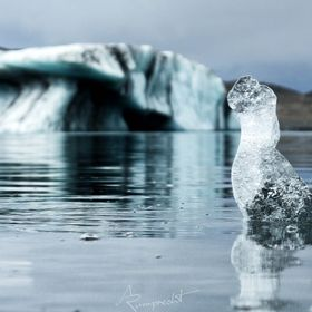 Saw this little ice sculpture on Jökullsarlon in Iceland and don't if it were the ducks around me that always make me think about ducks whe...