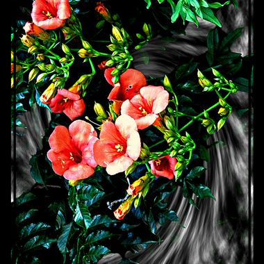 A flower manipulated image.