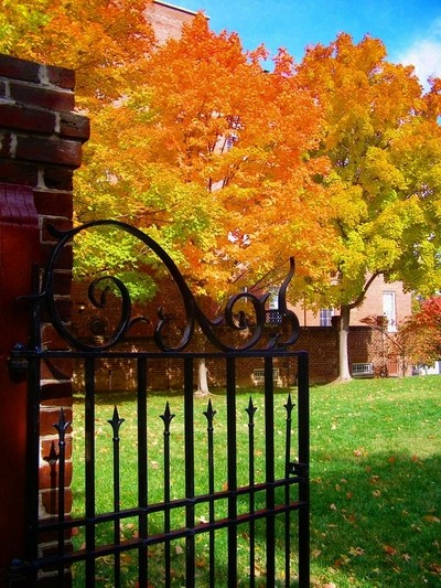 The Gate in Autumn