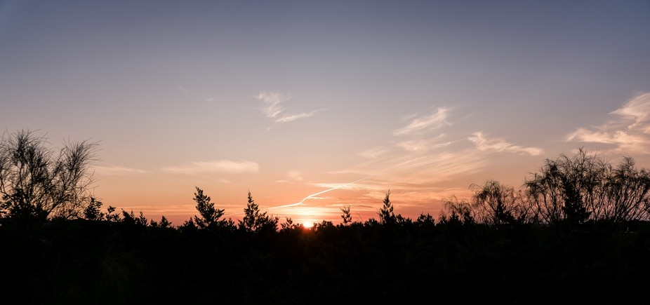 Walking the dogs so early in the heat of the summer that I managed to take a few sunrises, includ...