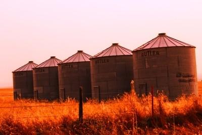 Wheat Silos in a field