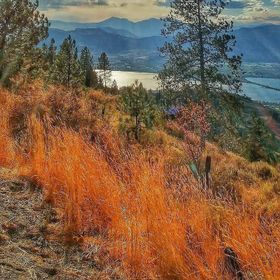 From the Osoyoos BC lookout..couldn't resist the fall colors.