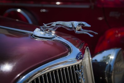 Ford Greyhound- Hood Ornament