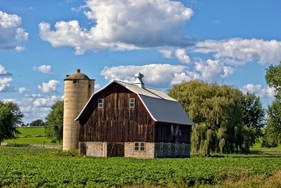Wisconsin Old Barn 11