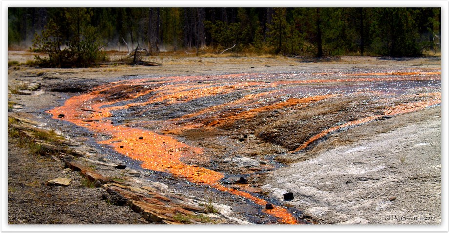 On the upper geyser hike, you can see several pools with amazing color such as this one with the bright copper.