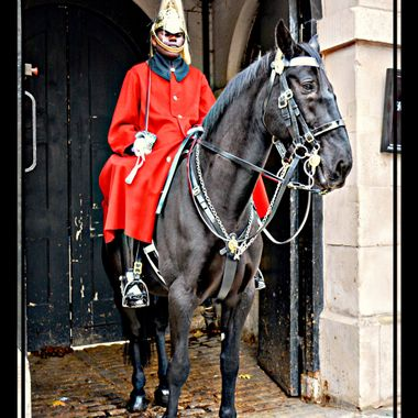 Member of the Household Cavalry on duty in Whitehall.