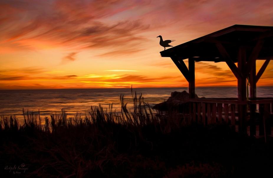 A Pacific coast sunset near Asilomar, California