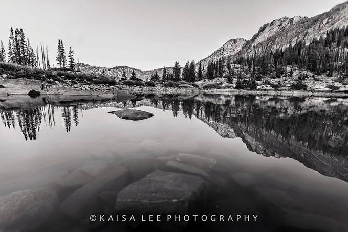 """""""Endure"""" by Kaisaleephotography - The Water In Black And White Photo Contest"""