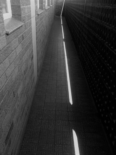 3031 Leading Line of Light