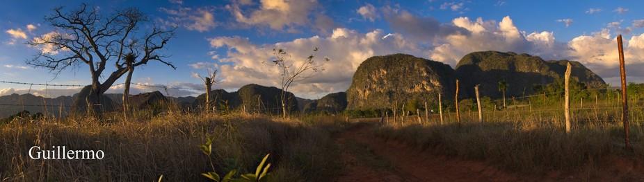_REY6292 Panorama