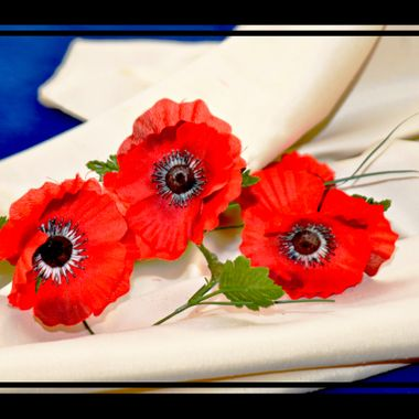 Poppies for a sad occasion.